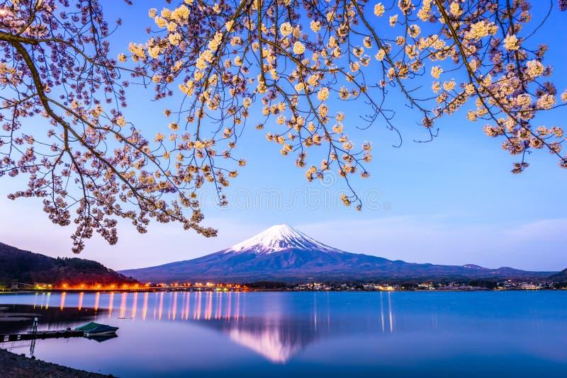 Mt. Fuji Spring stock image