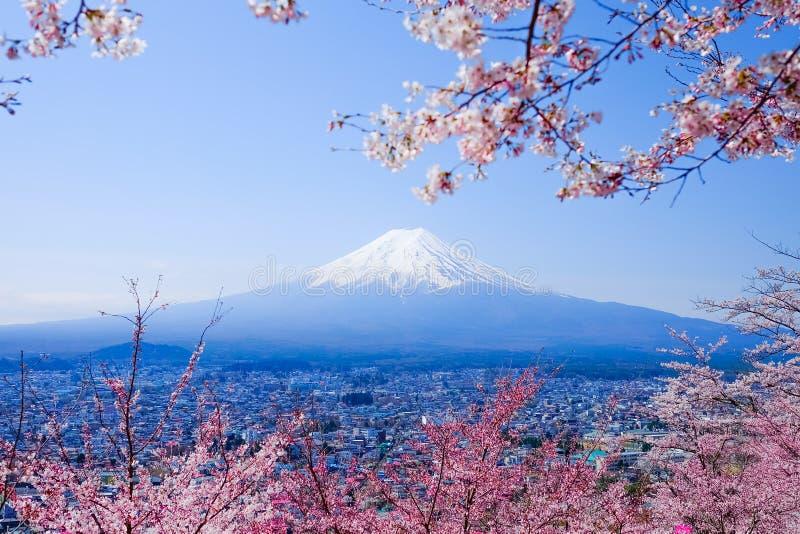 Mt Fuji mit Cherry Blossom (Kirschblüte) im Frühjahr Fujiyoshida, Ja lizenzfreies stockfoto