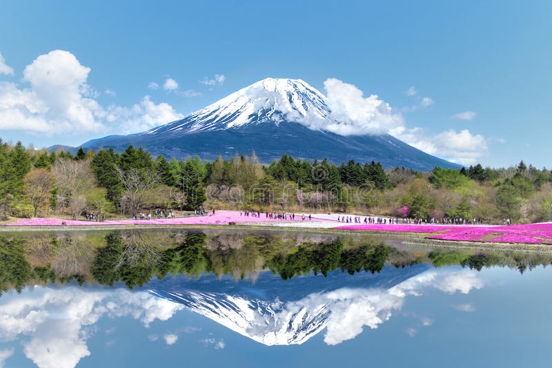 Mt. Fuji-the most famous place in Japan. royalty free stock image