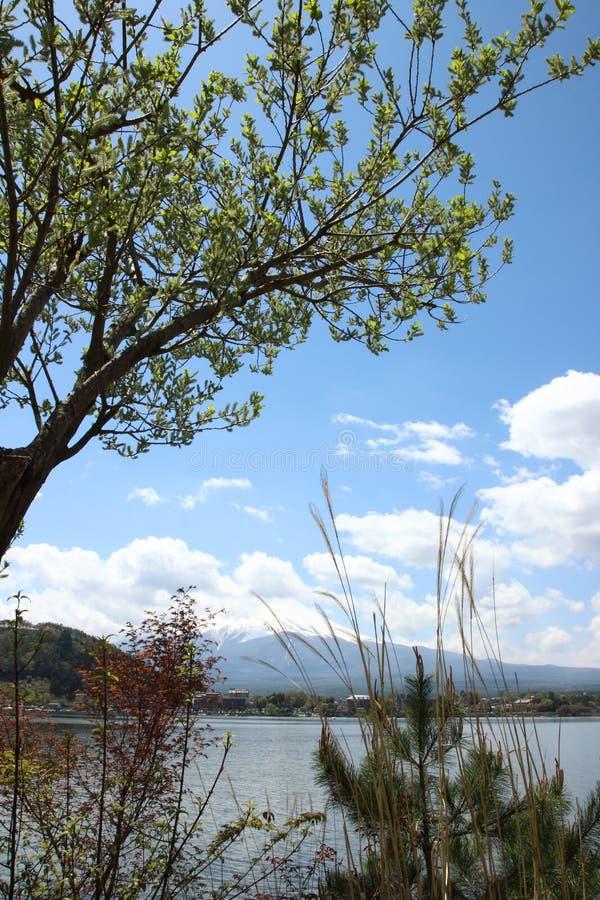 Mt Fuji nel lago Kawaguchi fotografia stock
