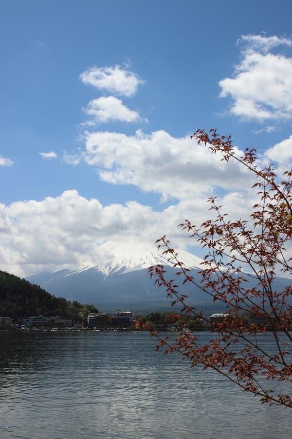Mt Fuji nel lago Kawaguchi fotografie stock
