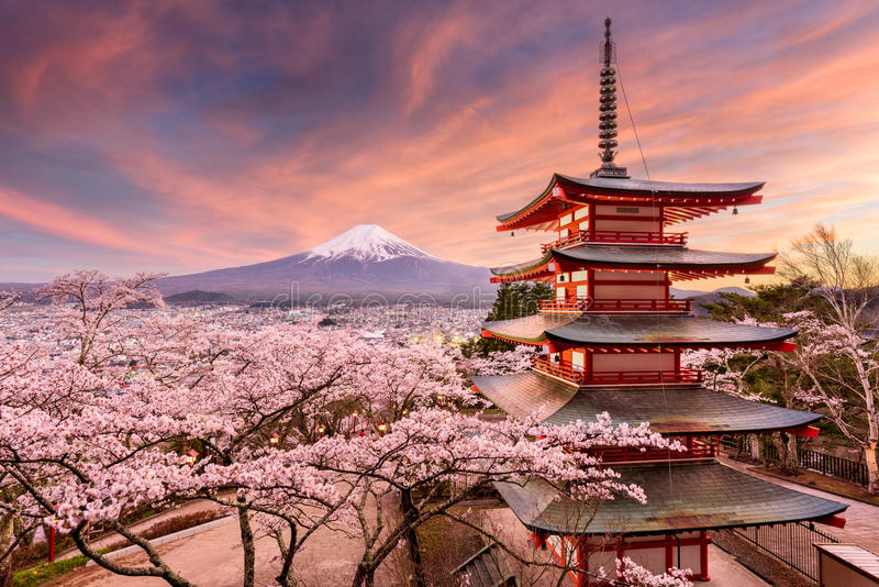 Mt. Fuji and Pagoda in Spring stock photo