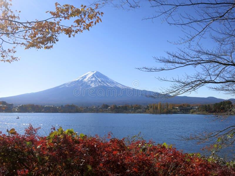 Mt. Fuji Przeglądać Między spadków liśćmi i gałąź obrazy royalty free