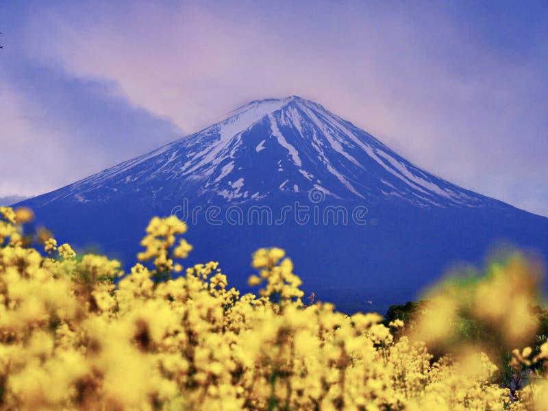 Mt Fuji, señal japonesa famosa con las flores foto de archivo