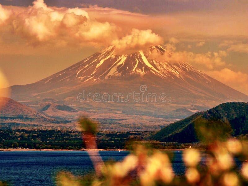 Mt Fuji, señal japonesa famosa con las flores imagen de archivo libre de regalías