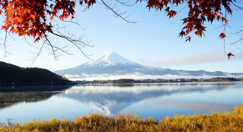 Mt Fuji z spadków kolorami w Japan zdjęcie stock