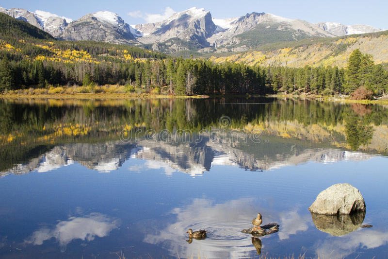 Mt. Hallet reflecting in Sprague Lake at Rocky Mountain National. Mt. Hallet reflects in Sprague Lake at Rocky Mountain National Park royalty free stock photography