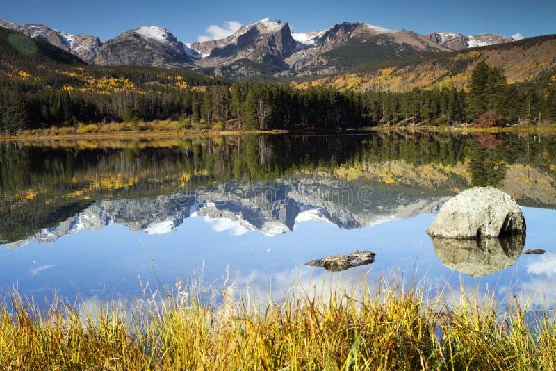 Mt. Hallet reflekterade i Sprague Lake på Rocky Mountain NP royaltyfri foto