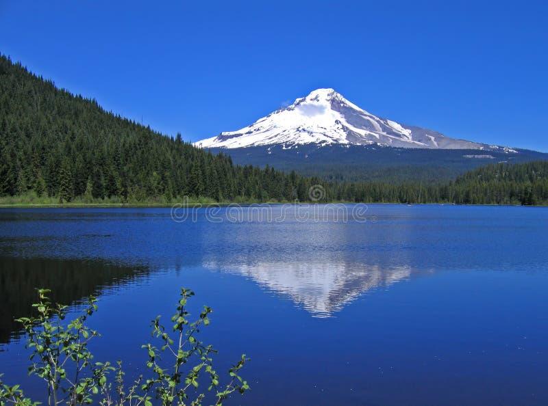 Mt. Haubenreflexion lizenzfreies stockbild