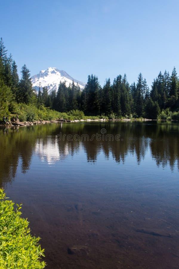 Mt Hood National Forest på spegel sjön på en stillhet, solig molnfri dag, med en sikt av Mt Huv - Oregon i det Stillahavs- nordvä royaltyfri foto