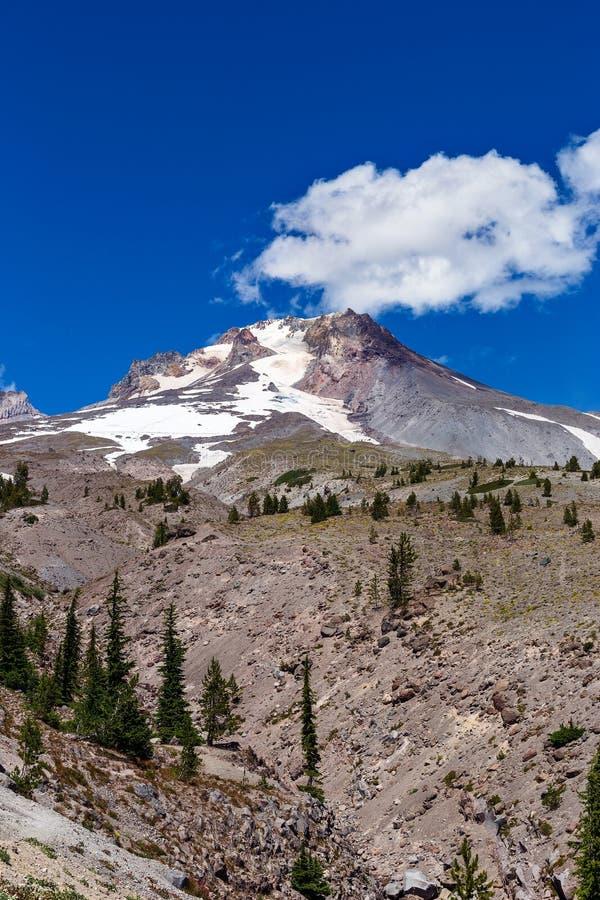 Mt. Hood, Oregon summer landscape royalty free stock photos