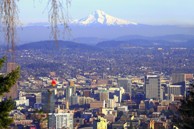 Mt. Hood & Portland panorama.