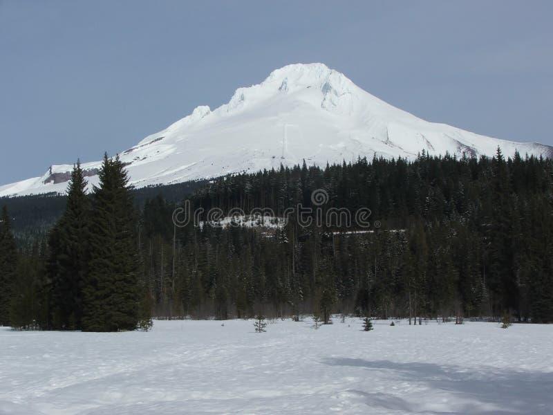 Mt Hood Snowcapped Peak photo libre de droits