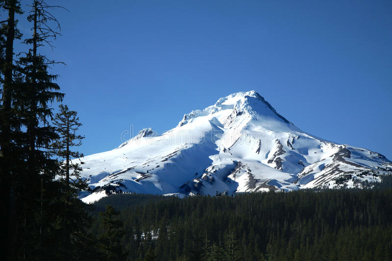 Mt Hood In Spring royaltyfri bild