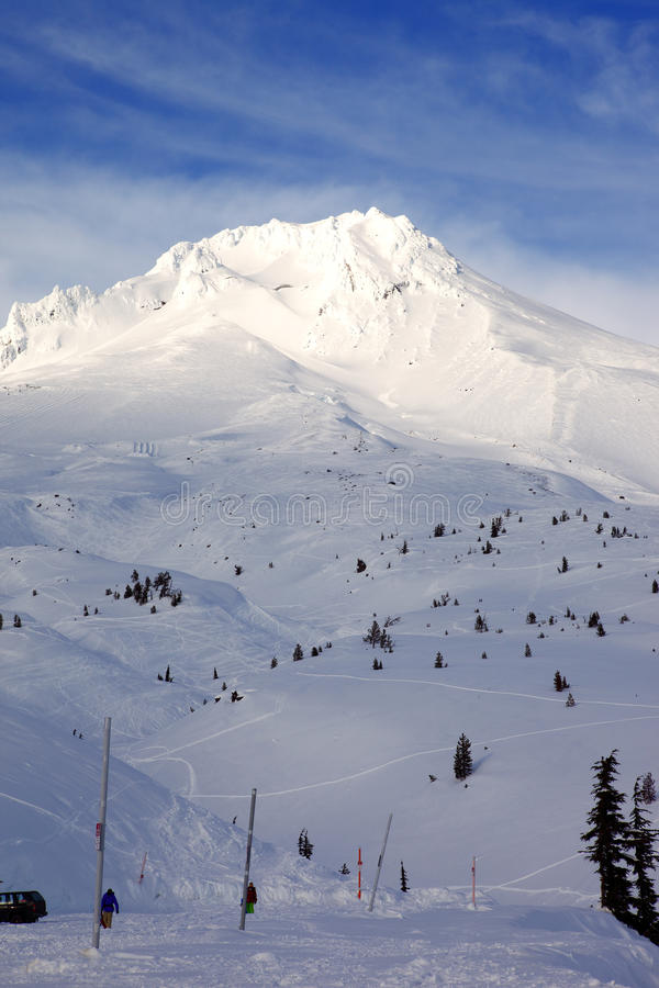Mt. Hood In Winter.- (vertical) Royalty Free Stock Images