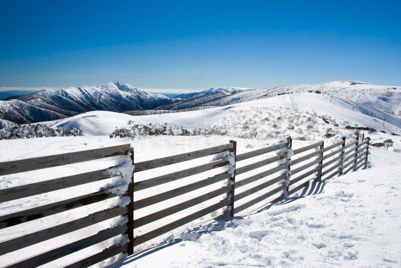 Download Mt Hotham nell'inverno immagine stock. Immagine di ricreazione - 56888363