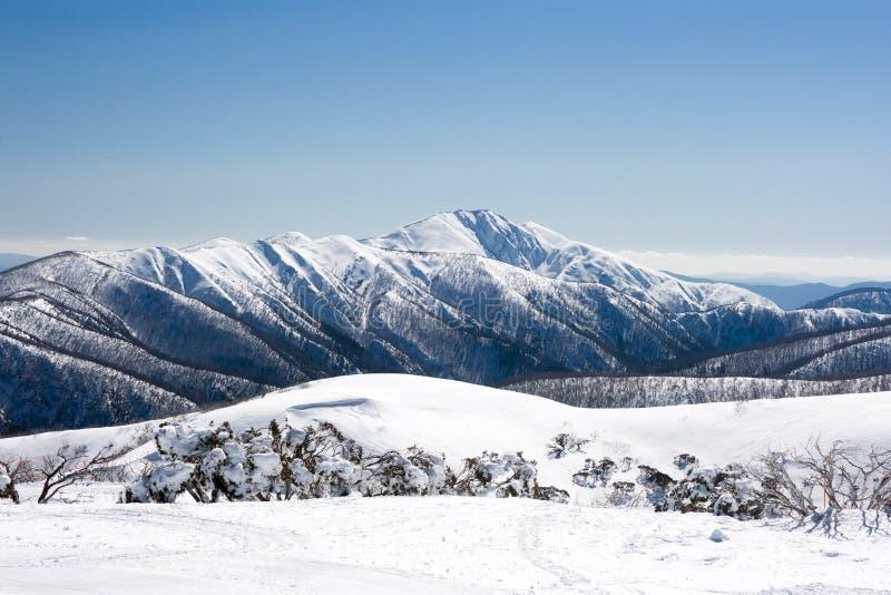 Download Mt Hotham nell'inverno fotografia stock. Immagine di inverno - 56889902