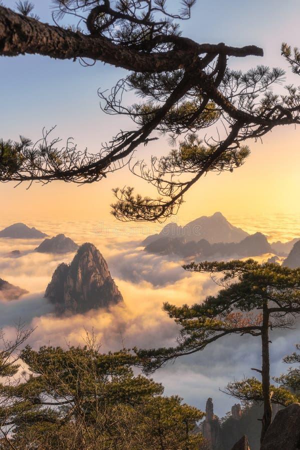 Mt Huangshan nell'Anhui, Cina fotografia stock libera da diritti