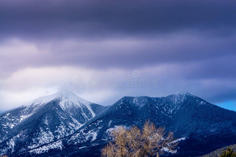 Mt Humphreys, hampe de drapeaux, Arizona photographie stock libre de droits