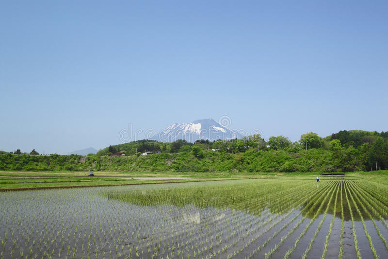 Mt.Iwate i pastoralny krajobraz obraz royalty free