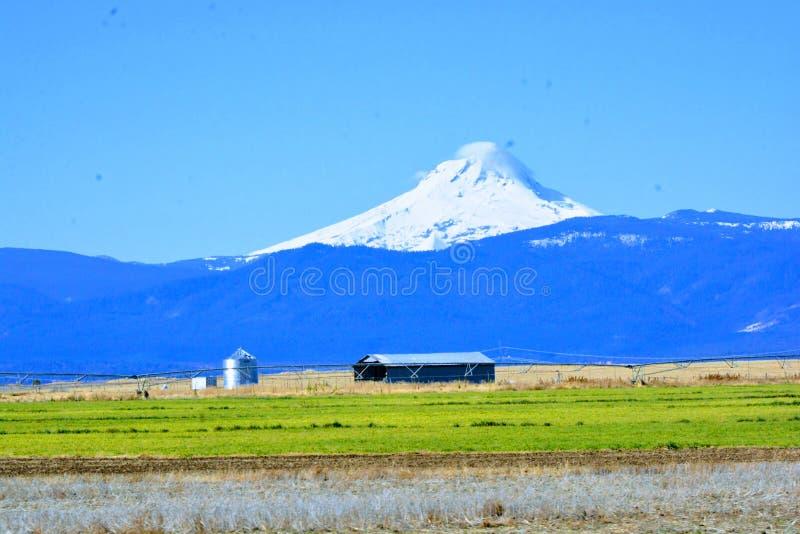 Mt Jefferson środkowy Oregon za gospodarstwem rolnym fotografia royalty free
