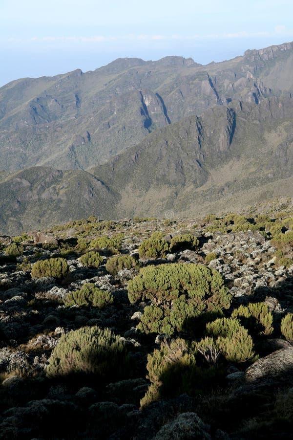 Mt Kilimanjaro, Tanzanie, Afrique images stock