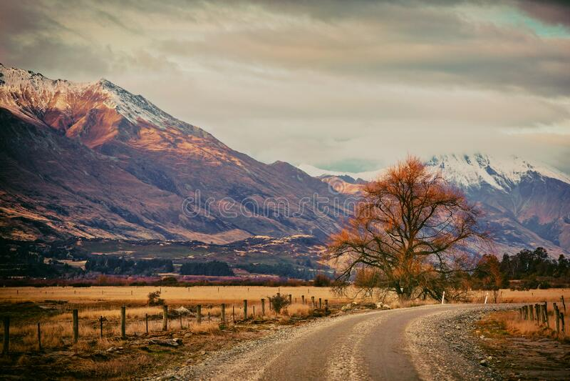 Mt Larkins from Kinloch Road Glenorchy NZ stock image