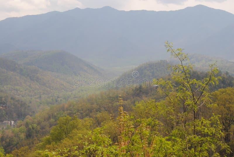 Mt. Leconte royaltyfri bild