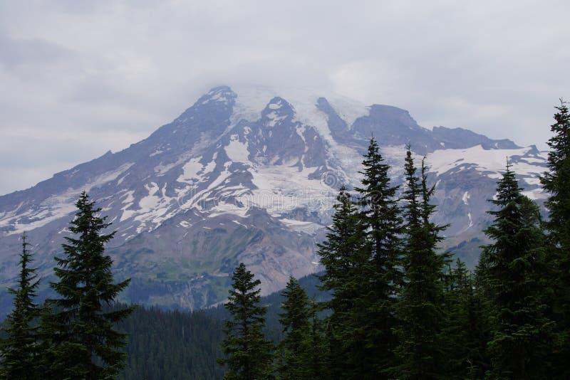 Mt Más lluvioso, con el bosque de la conífera fotos de archivo
