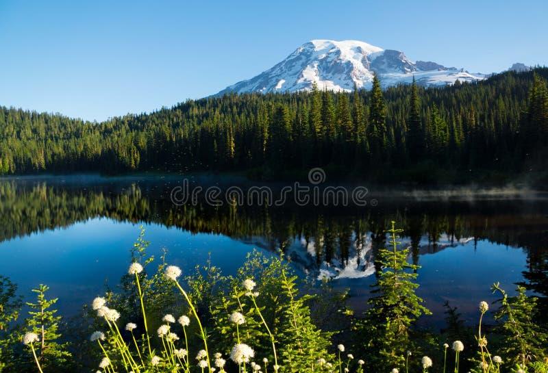 Mt Más lluvioso en el lago reflection fotos de archivo libres de regalías