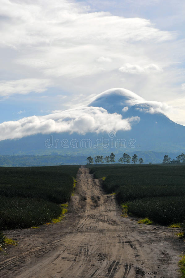 Mt Matutum. The prominent Mt. Matutum is one of the favorite climbing destinations in Mindanao and is considered as an outstanding challenge to mountaineers and royalty free stock photo
