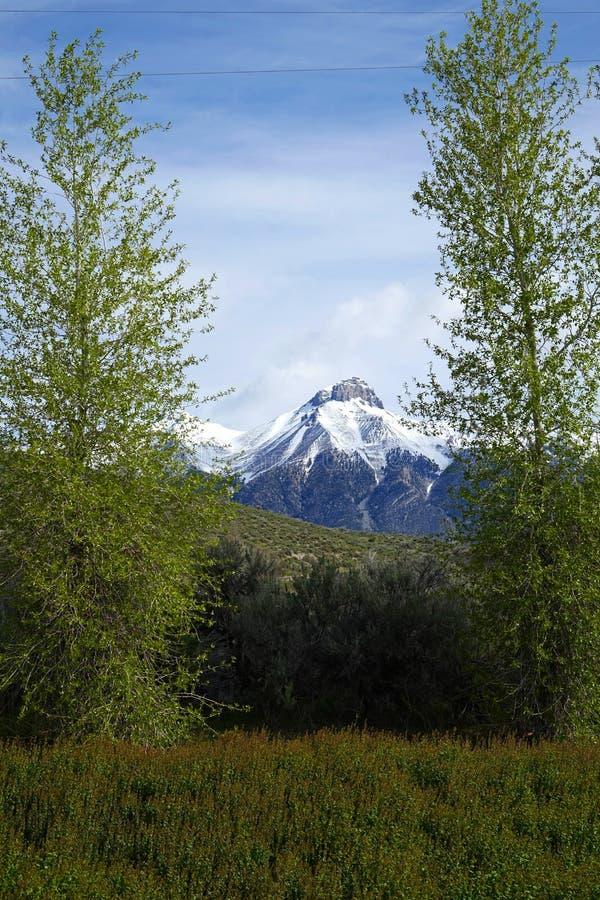 Mt McCaleb - Mackay, Idaho imagenes de archivo