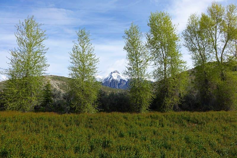 Mt McCaleb - Mackay, Idaho imagen de archivo