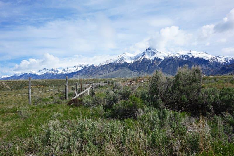 Mt McCaleb - Mackay, Idaho fotos de archivo