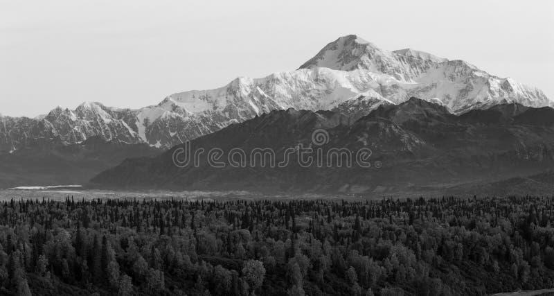 MT McKinley Alaska Noord-Amerika van de Denalibergketen royalty-vrije stock foto