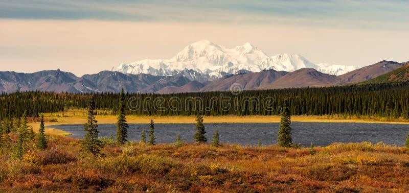 MT McKinley Alaska Noord-Amerika van de Denaliwaaier royalty-vrije stock fotografie
