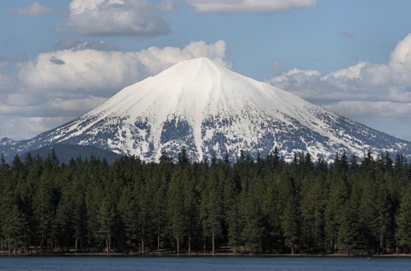 Download Mt, McLaughlin, Oregon fotografia stock. Immagine di foresta - 3893438