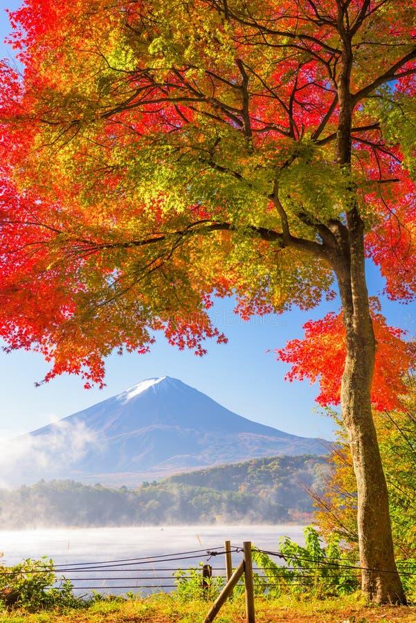 Mt Monte Fuji no outono imagens de stock royalty free