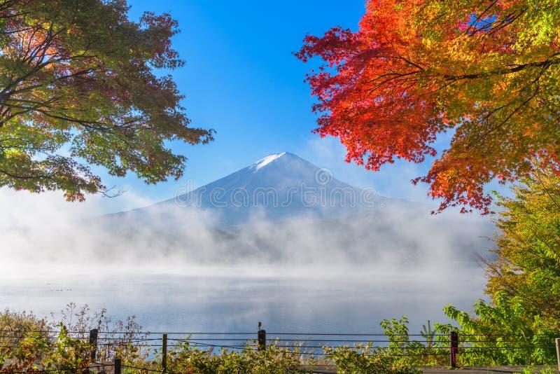 Mt Mount Fuji i höst fotografering för bildbyråer