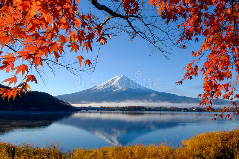 Mt Mount Fuji och höstlövverk på sjön Kawaguchi royaltyfri fotografi