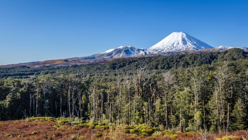 Mt Ngaruahoe. View of Mt Ngaruahoe from Tongariro National Park