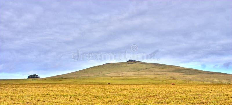 Mt. Poike imagens de stock royalty free