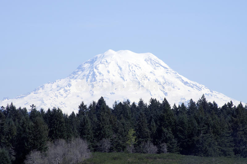 MT Rainer Washington royalty-vrije stock afbeelding