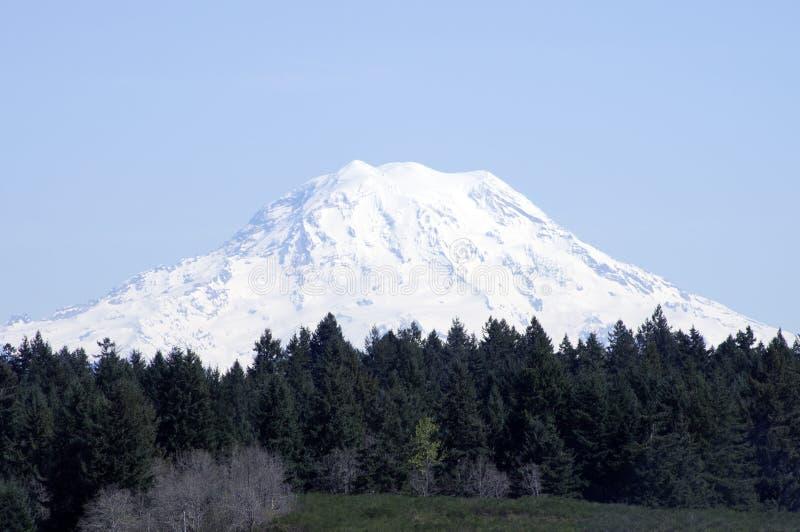 Mt. Rainer Washington royalty free stock image
