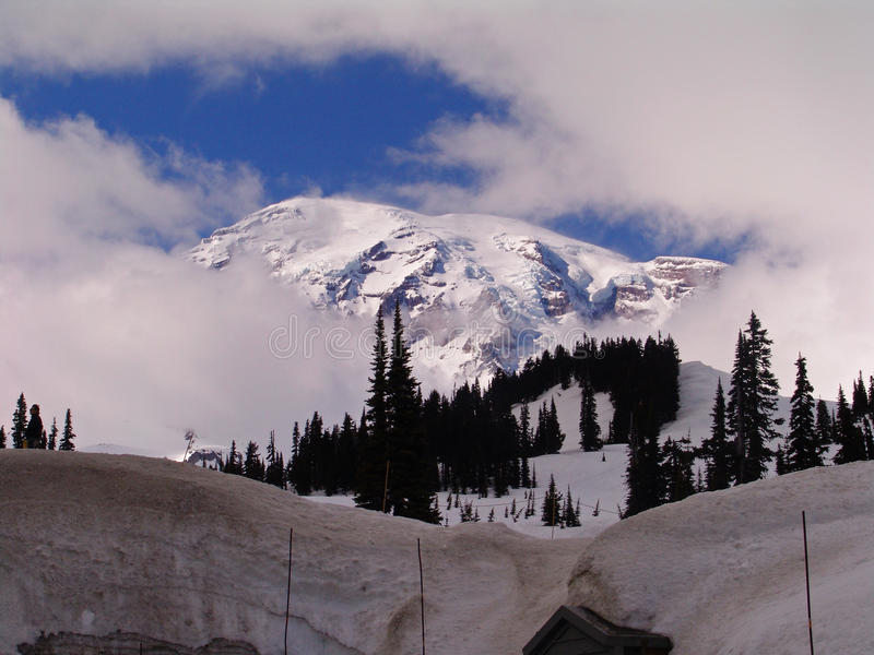 Download Mt. Rainer Washington stock image. Image of vintage, rainer - 48991839