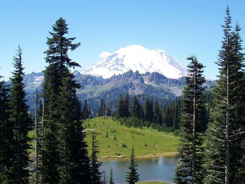 Mt. Rainier royalty free stock photo