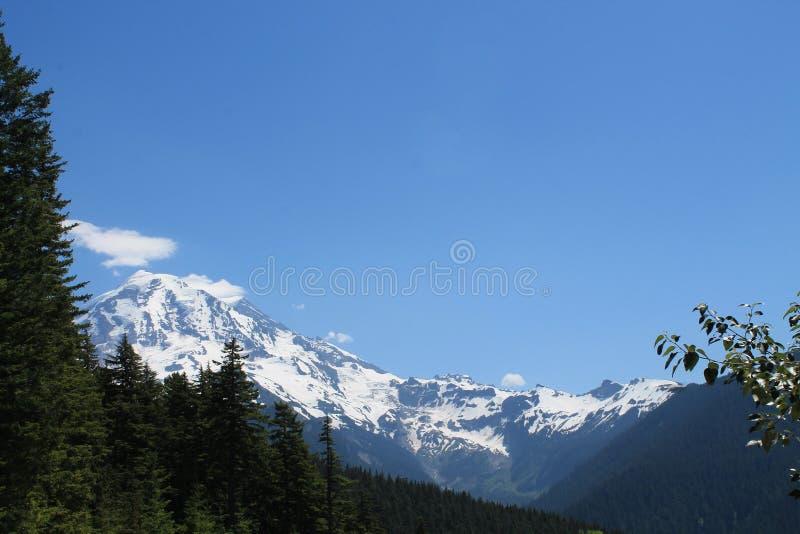 Mt rainier royaltyfria foton