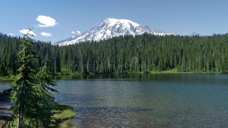 Mt rainier and breeze rippled reflection lake in washington state. Mt rainier and a breeze rippled reflection lake in washington state of the us pacific royalty free stock image