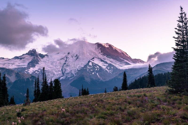 Mt Rainier National Park At Sunrise royalty free stock images