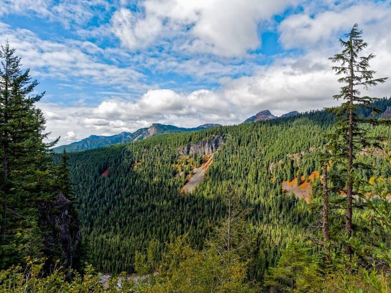 Mt Rainier National Park Valley fotografía de archivo libre de regalías